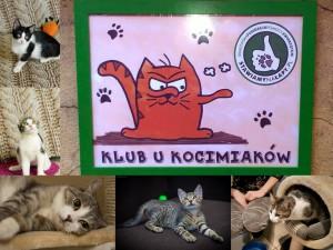 Sobotnie spotkanie w Klubie u Kocimiaków !!!